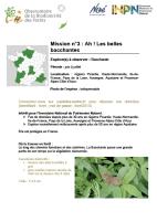Visuel_mission_n°3