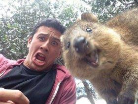 Selfie_Australie