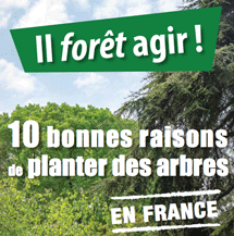 Planter-des-arbres1
