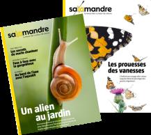 Visuels_magazines_La_Salamandre