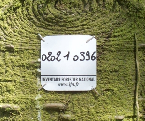 Plaque de l'Inventaire Forestier National