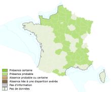 INPN_Escargot de Bourgogne