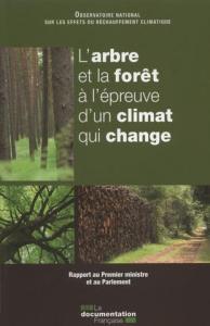 L-arbre-et-la-foret-a-l-epreuve-d-un-climat-qui-change_large