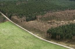 Exploitation forestière Plateau de Millevache Corrèze
