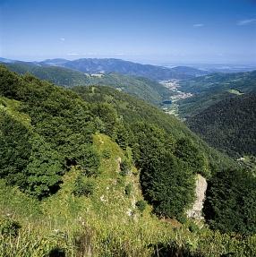 Vallée de la Doller au PNR Ballons des Vosges en été - Depuis le sommet le Lac de Sewen, au fond la plaine d Alsace -  -