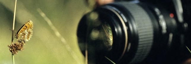 65 Millions d'Observateurs : Retour sur les nouveaux outils en développement